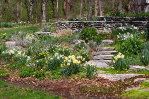 The Garden Conservancy's Open Days Program @ Feldker Garden | Waterloo | Illinois | United States